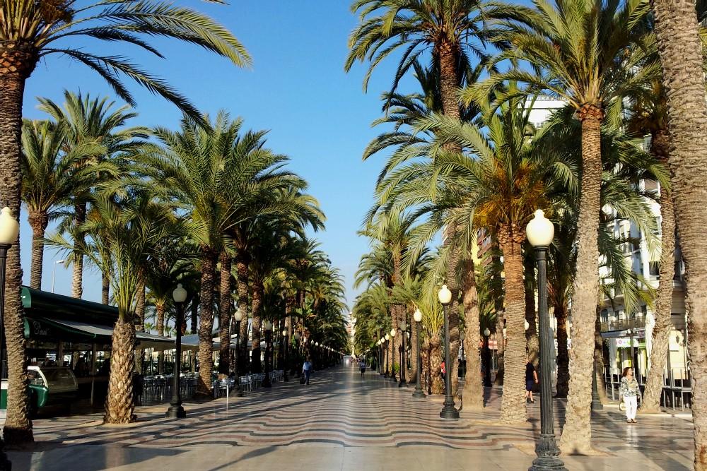 Cosa vedere ad Alicante: la Esplanada de España