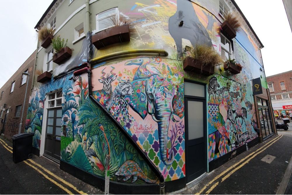 Street art a Brighton: murales con animali della savana nel quartiere di New England Quarter