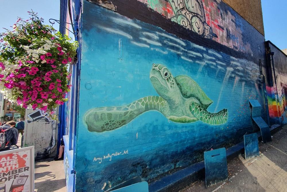 Street art a Brighton: murales con tartaruga nel quartiere di North Laine