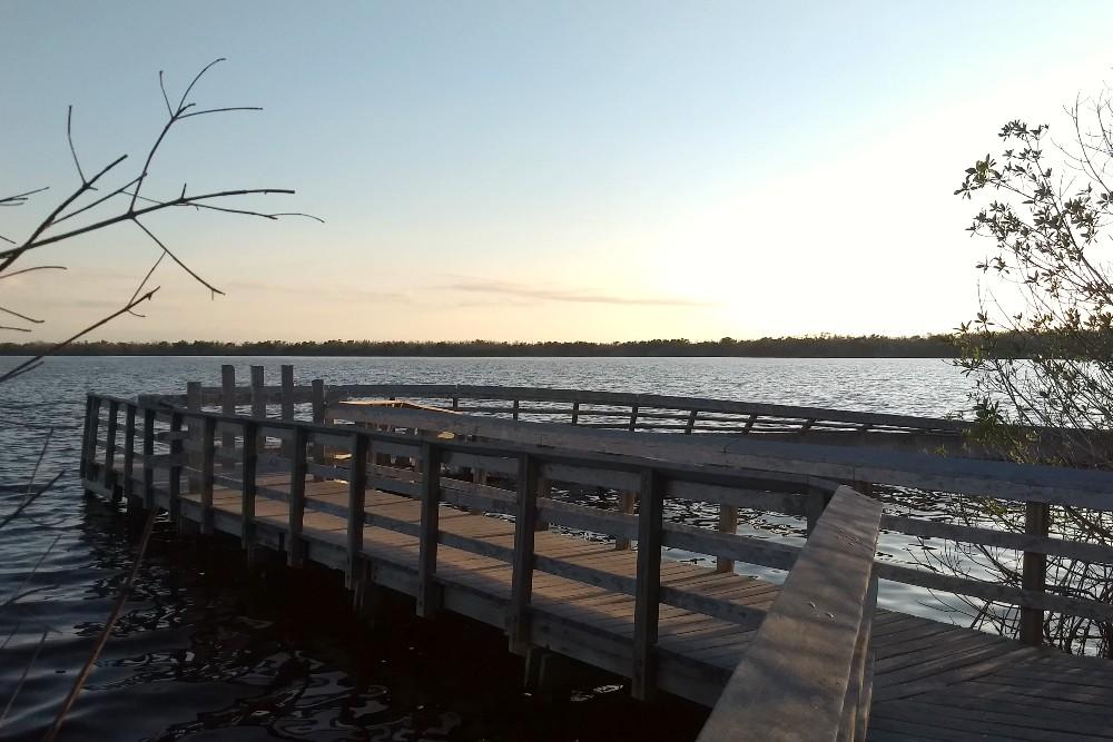 Passerella in legno al tramonto sul West Lake Trail distrutta dall'uragano nelle Everglades in South Florida
