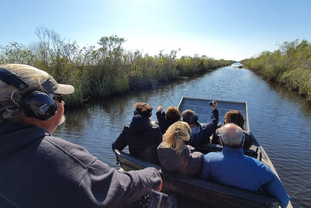 Tour in airboat nelle Everglades in South Florida