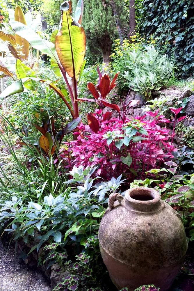Piante e fiori nei Giardini La Mortella tra le cose da vedere a Ischia