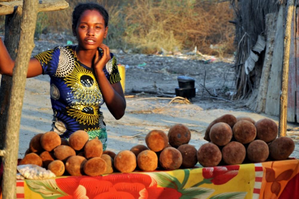 Bancarella di frutti di baobab lungo la RN8 verso il Parco Nazionale Tsingy di Bemaraha in Madagascar