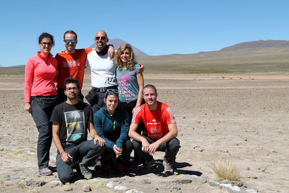 Pianure ad alta quota con vigogne verso la Valle del Colca in Perù