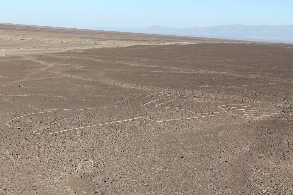 Linee di Nazca in Perù: la rana vista dal Torre Mirador