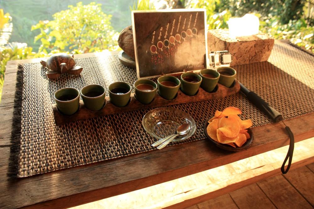 Degustazione di caffè alla piantagione di Bali Pulina in Indonesia.
