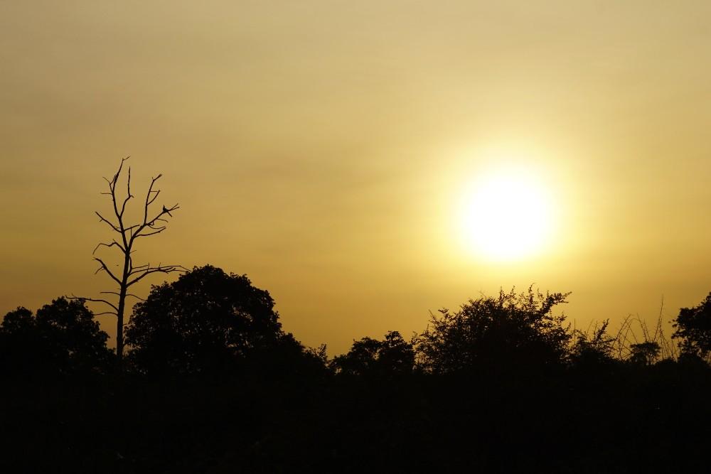 Alba nel Parco Nazionale di Uda Walawe in Sri Lanka.